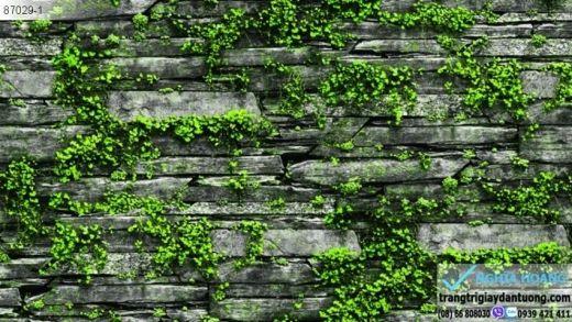 giấy dán tường giả đá rêu xanh, giấy dán tường đá rêu xanh, giấy giả đá