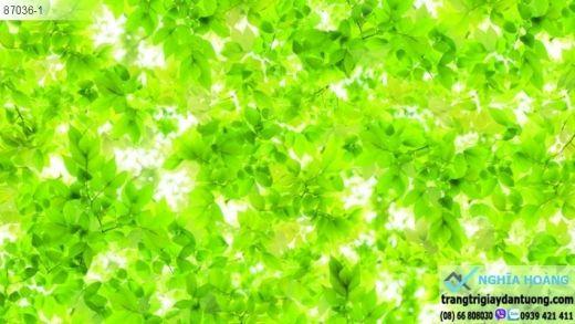 giấy dán tường lá xanh, giấy dán tường thảm xanh