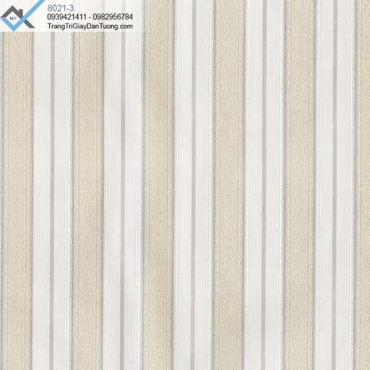 Giấy dán tường sọc trơn, giấy dán tường sọc đơn giản