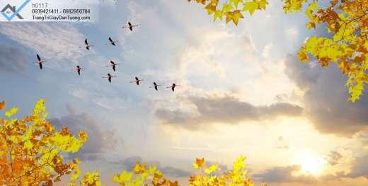 Tranh dán trần bầu trời hoàng hôn, tranh dán trần mây trời