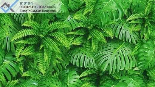 Giấy dán tường thảm thực vật-giấy dán tường lá xanh