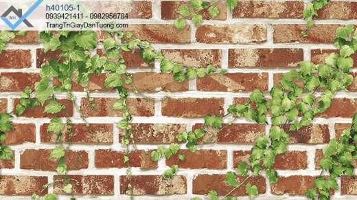 Giấy dán tương tường gạch giây leo tường