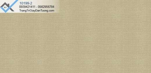 giấy dán tường màu nâu