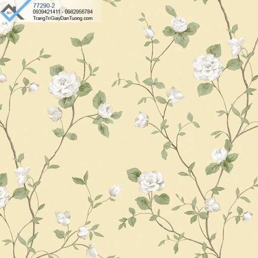 Giấy dán tường cành hoa